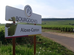 Château de Corton-André -  Vineyard sign in the commune of Aloxe-Corton in the Cote de Beaune region of Burgundy