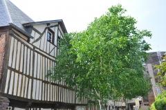 Immeuble à logements de la cour Canel - Français:   Immeuble de la cour Canel, colombages à Pont-Audemer (Eure, 27).