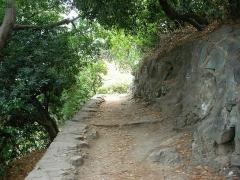 Ensemble constitué de la rampe Saint-Charles, de l'escalier et du jardin Romieu - Jardin Ramieu à Bastia (Haute-Corse, France).