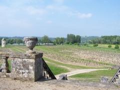 Château de Portets - Français:   Vue depuis la terrasse du château à Portets, Gironde, France