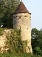Maison de la cité Frugès - Pigeonnier du château de Langoiran (Gironde, France)