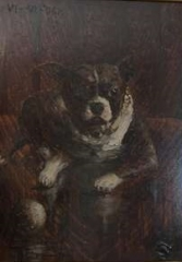 Manoir situé dans le bourg - English: Portrait of Edgewood Hub, Boston Terrier owned by Warren Harding in collection of Ohio History Connection.