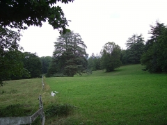 Château de la Tour-Maubourg - English: A view of Maubourg Castle's park