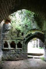 Site de la Seigneurie -  IMG_0039 Doué-la-Fontaine