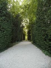 Maison dite la Boisserie - Français:   Allée dans le parc de La Boisserie, à Colombey-les-Deux-Églises