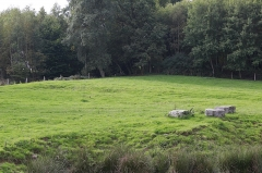 Site archéologique du sanctuaire antique du Premier Silorit - Français:   Sanctuaire d\'Hercule à Deneuvre.