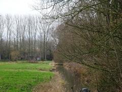 Château dit de l'Abbaye et parc de l'ancienne abbaye de Cysoing -  Domaine de l' Abbaye Sainte-Calixte, anciens viviers Cysoing Nord.-France