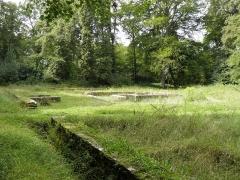 Temple gallo-romain de la forêt d'Halatte - English:   Ruins of the gallo-roman temple in the middle of the Forêt d\'Halatte, Oise, France.