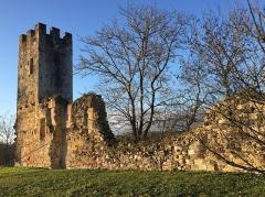 Ancien château de Sault -  Tour du château de Sault-de-Navailles