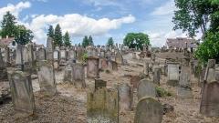 Cimetière juif de Koenigshoffen -  Ce cimetière s'agrandit au cours du XIXe siècle et s'étend sut une petite colline.
