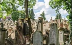 Cimetière juif de Koenigshoffen -  Ce lieu de mémoire n'est plus vraiment actif depuis la fin de la première guerre mondiale, il y a plus d'un siècle.