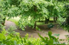 Ancienne propriété Gillet - English: Park path winding under deciduous trees