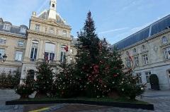 Mairie du 15e arrondissement -  Christmas tree @ 15th Arrondissement City Hall @ Paris 15