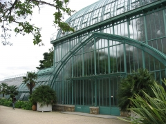 Jardin fleuriste municipal -  Serres d'Auteuil  Map: 48° 50' 49