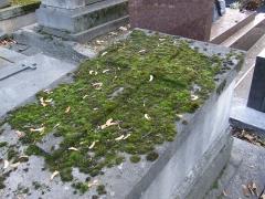 Cimetière Montmartre - Français:   tombe anonyme