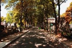 Cimetière Montmartre -  Avenue De La Croix