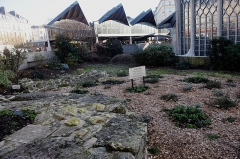 Eglise Sainte-Jeanne-d'Arc -  Punto del rogo di Giovanna d\'Arco - 30 maggio 1431
