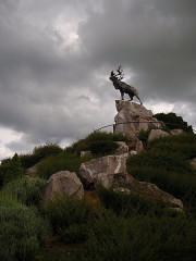 Mémorial terre-neuvien et parc commémoratif -  Beaumont Hamel Memorial
