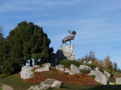 Mémorial terre-neuvien et parc commémoratif - English: Beaumont-Hamel Newfoundland Memorial - The caribou mound