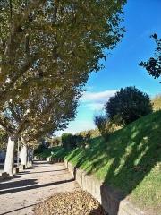 Digue d'enceinte de la ville - Français:   Digue de Caderousse, Vaucluse, France