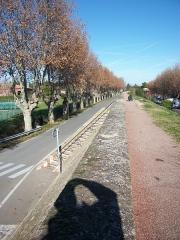 Digue d'enceinte de la ville - English: The pedestrian path on top of the dike around Caderousse (Vaucluse, France).