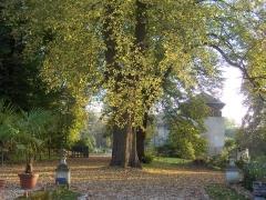 Domaine de Stors -  Entrée du domaine de Stors (L'Isle-Adam, Val-d'Oise)