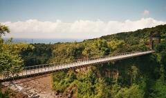 Pont suspendu de la rivière de l'Est - English: The 'Pont suspendu de la Rivière de l'Est' ('Suspension bridge over the Eastern River') on Réunion, a French island in the Indian Ocean.
