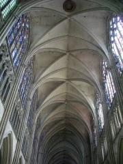 Cathédrale Saint-Pierre Saint-Paul - Cathédrale Saint-Pierre-et-Saint Paul de Troyes (Aube, France): nef