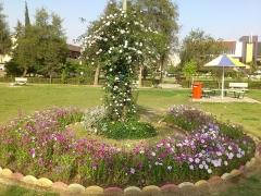 Chapelle Saint-Berchaire - العربية: التقطت هذه الصورة في الحديقة المقابلة لمركز الشؤون الطلابية مقابل المركز الطلابي في فصل الربيع