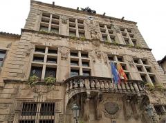 Hôtel de ville - English: Town hall of Tarascon