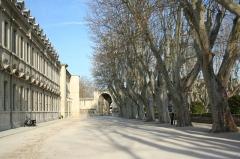 Hôpital Sainte-Marthe -  L'Université d'Avignon.