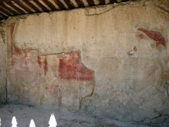 Terrains de fouilles gallo-romaines de la colline du Puymin (ensemble) -  mural