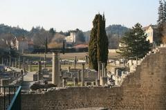 Thermes gallo-romains du Nord (vestiges) -  La Villasse
