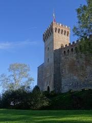 Château - Français:   Le château de Morlanne.