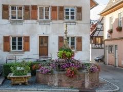 Fontaine dite Stockbrunnen -  L'Ours protège toute cette petite région entre Selestat et Barr, on retrouve ce totem dans la légende de l'abbaye d'Andlau par exemple ou dans le blason de Dambach la ville.