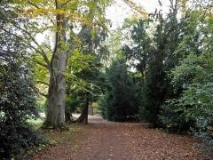 Ancien domaine de Windeck, dit Foyer de Charité - Deutsch: Park des Foyers de Charité in Ottrott