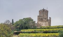 Château dit Schlossberg et enceinte - English: Castle of Kaysersberg, Haut-Rhin , France