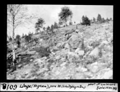 Champ de bataille du Linge -
