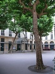 Lycée Fénelon - English: Courtyard of Lycée Fénelon (Paris, France)