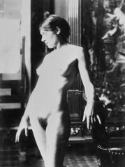 Musée Gustave Moreau - English: photo by Henri Rupp for La Sirène et le Poète by Gustave Moreau