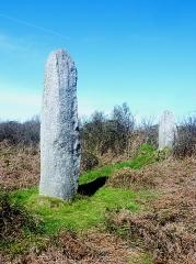 Alignement de Traonigou - Français:   Porspoder: les menhirs de Troanigou.