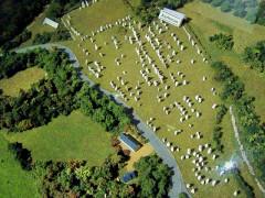 Quatre-vingt-deux menhirs alignés - English: Kerlescan alignments, Carnac, France