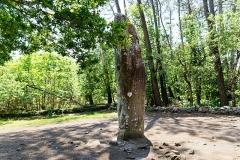 Tumulus dit du Manio, quadrilatère et menhir de Manio - Français:   Menhir géant du Manio. (Carnac, Morbihan, Bretagne, France)