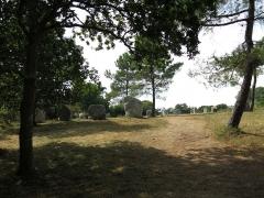Cromlech de Crucuno - Français:   Cromlech de Crucuno situé sur la commune d\'Erdeven