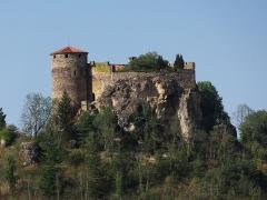 Restes de Château fort -  Château de Busséol
