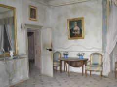 Château de la Roche -  Château de la Roche, (France). Le salon bleu