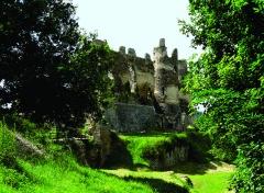 Ruines du Château fort de Blot-le-Rocher, dit Château Rocher - Nederlands: De middeleeuwse burcht Château-Rocher - ook Château fort de Blot-le-Rocher (eind XIe - XVe eeuw). De ruïne die gerestaureerd wordt verheft zich bovenaan een klif, 150 meter boven de Sioule, op de plaats van een vroegere versterking uit de IXe eeuw. De burcht bevindt zich op het grondgebied van de gemeente Saint-Rémy-de-Blot, Puy-de-Dôme, Auvergne.