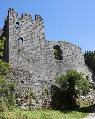 Donjon et les restes du château -  Templar Commandery