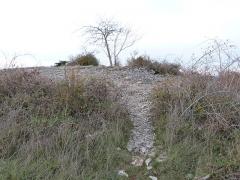 Dolmen et tumulus du Genevrier - Français:   Dolmen du Genevrier (accès par un passage aboutissant au-dessus du tumulus)