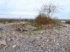Dolmen et tumulus du Genevrier - Français:   Dolmen du Genevrier (vue partielle de l\'entrée et tumulus)